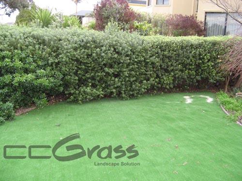 garden fake lawn